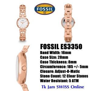 fossiles3350